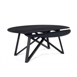 TABLE A RALLONGES WINGS                            (exclusivement en magasin)