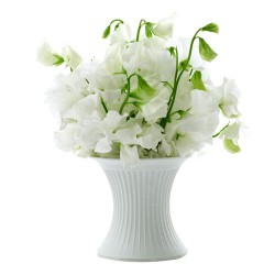 THE PERFECT VASE MOYEN MODELE