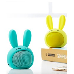 ENCEINTE LAPIN CUTTY