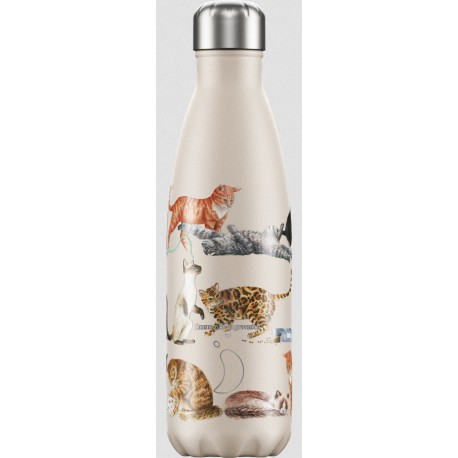 BOUTEILLE ISOTHERME CHATS CHILLY'S 500 ML