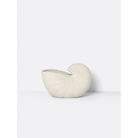 POT COQUILLAGE SHELL FERM LIVING
